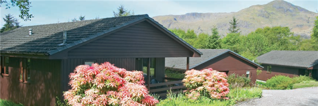 Birchbrae Lodges - 4 Star Self Catering cabins