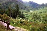 Achriabhach Forest walk, Glen Nevis