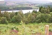 Daingean Trail, Glengarry