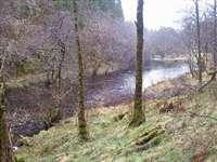 Loch Avich Trail, Dalavich