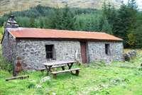 Glen Duror forest